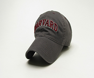 Harvard  Youth Dark Grey Foam Design Hat