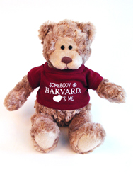 Wally Harvard Teddy Bear by Gund