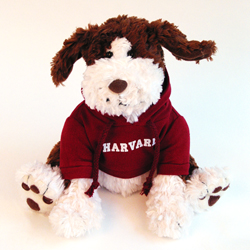 Benjamin Harvard Puppy Dog by Gund