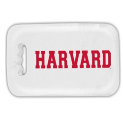 Bleacher White Harvard Stadium Seat