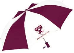 Business Folding Umbrella