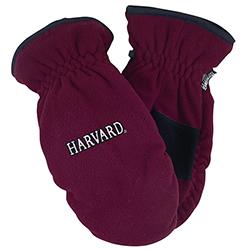 Harvard Maroon Thinsulate Mittens
