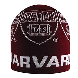 Harvard Knit Maroon Hat