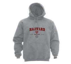 Youth  Grey Soccer Hd Sweatshirt
