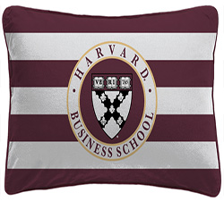 Rectangular Harvard Business School Stripe Pillow