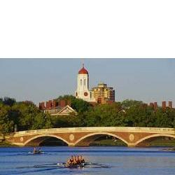 Rowers by the Bridge