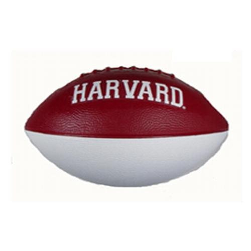 Harvard Foam Football