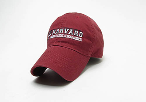 Harvard School of Arts & Sciences Hat