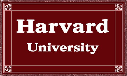 Harvard University Maroon  Afghan